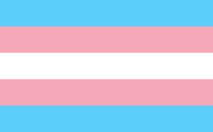 gender-reassignment-300x186